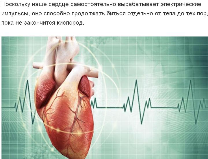 почему в присутствии врача сильно бьется сердце сейчас термобелье Norveg